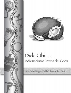Bookcover Dida Obi front
