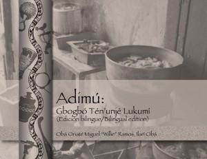 Bookcover Adimu bi 2013 front horizontal